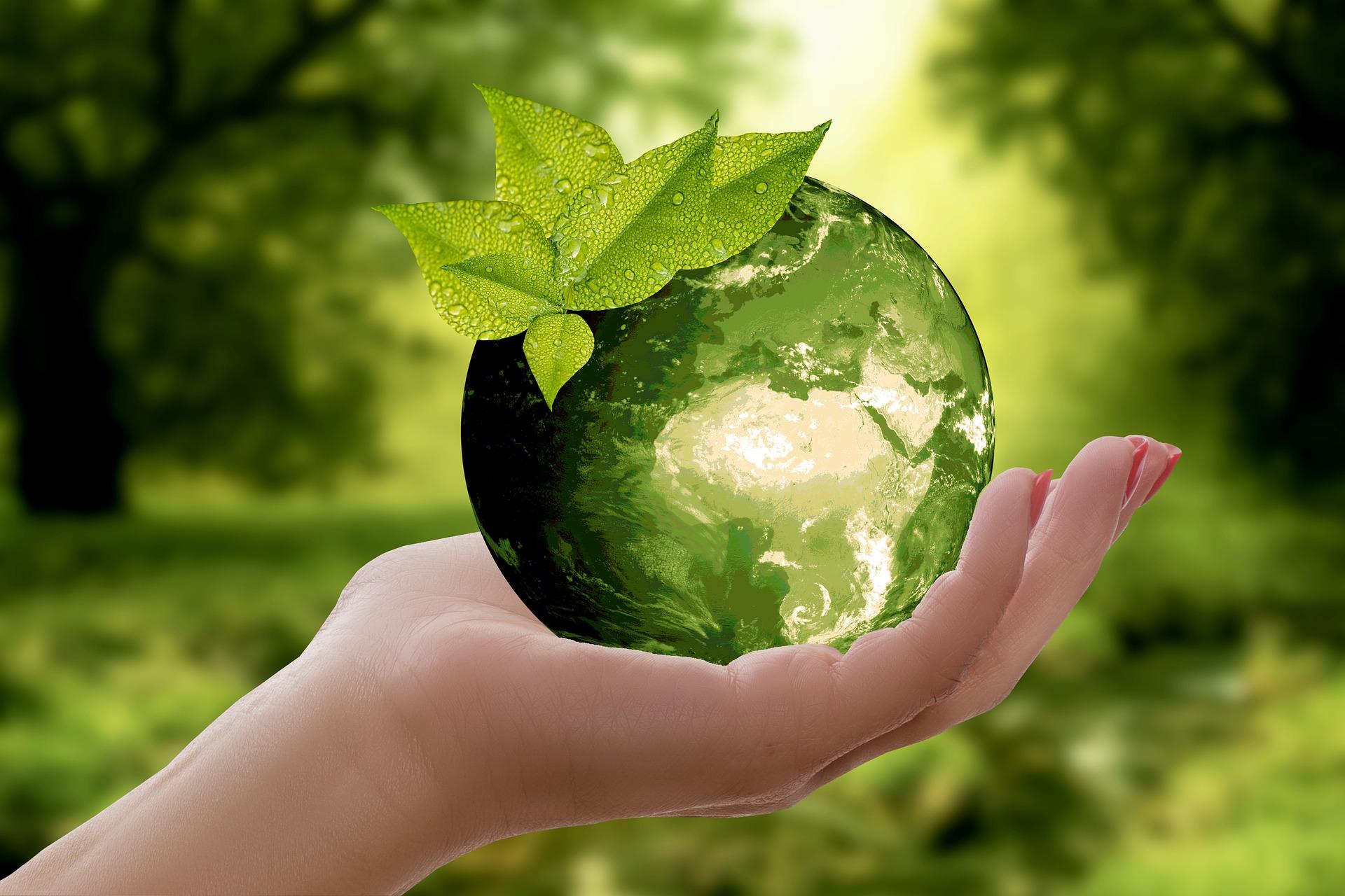 Für eine saubere Natur
